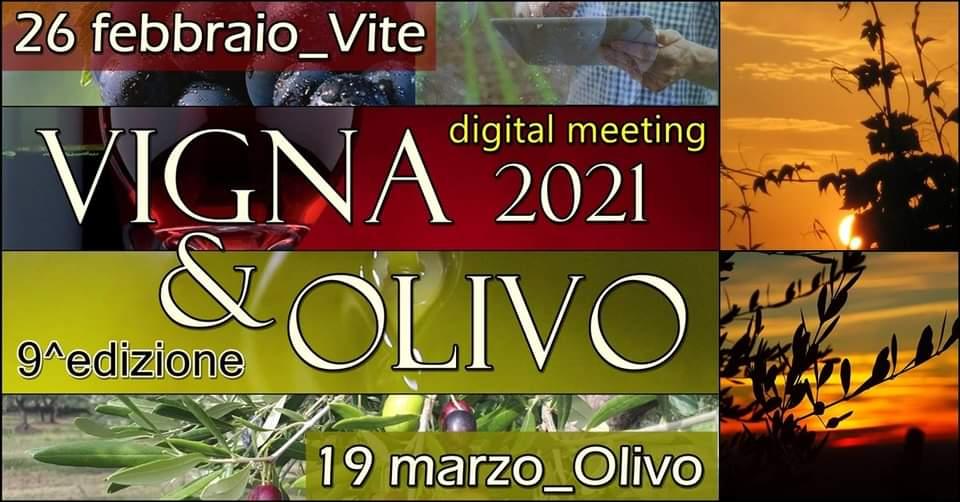 CUT Vigna & Olivo