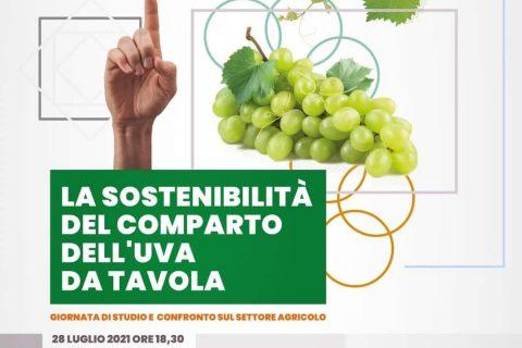 foglie-tv-sostenibilità-uva-da-tavola-rutigliano